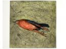 'Dead Bird'