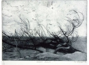 'Norfolk Beach', etching, 20.5 x 14cm