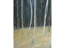 'Birchwood 1', oil, 62 x 77cm
