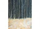 'Birchwood 2', oil, 62 x 77cm